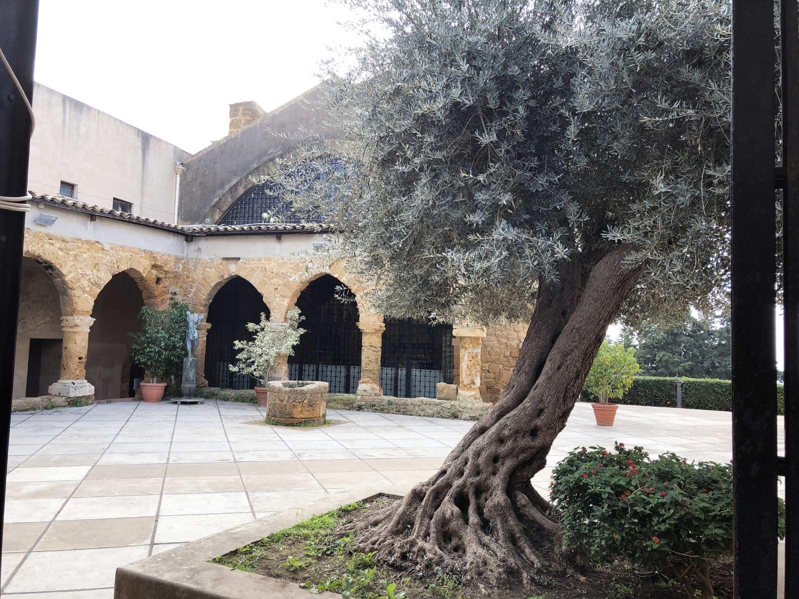 Il chiostro davanti al Museo Archeologico di Agrigento. Un ulivo in primo piano